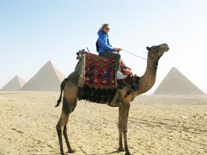 camel-300x225